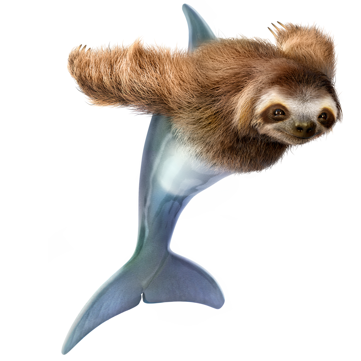 Slothdolphin_CL_06_RGB.png