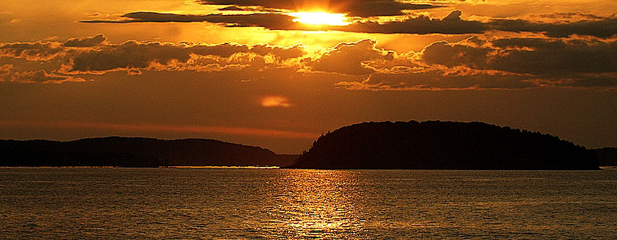Image credit: Bar Harbor Whale Watch Co.