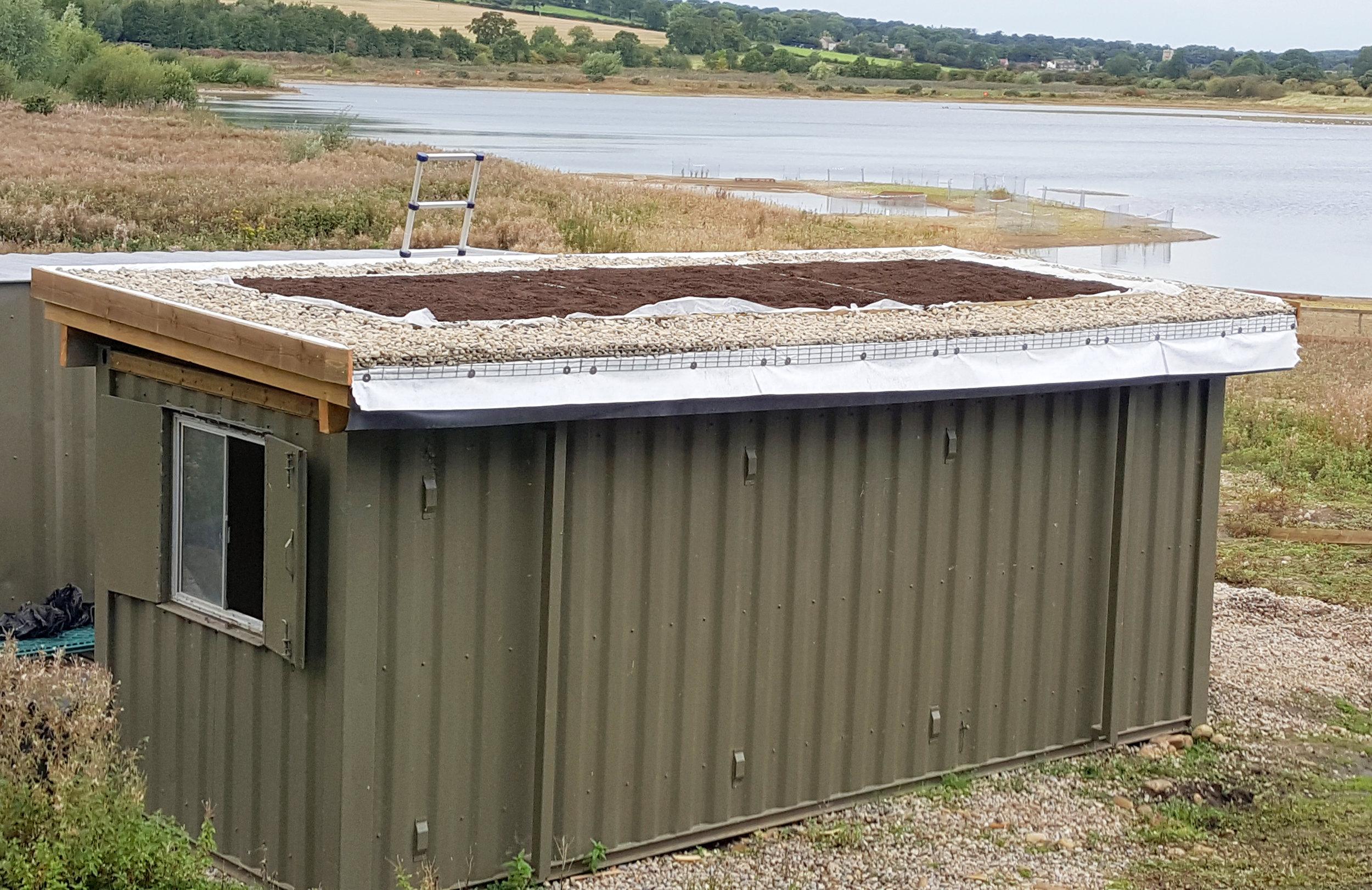 20170922_131903-Turf Roof-brighter.jpg
