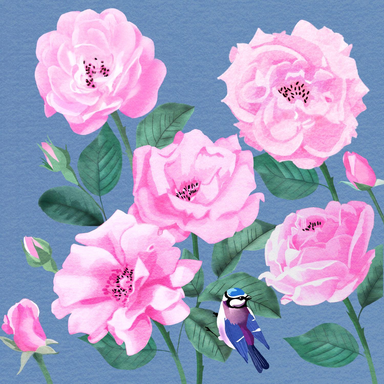 WILD ROSE IN PINK – Design Ref. 2286