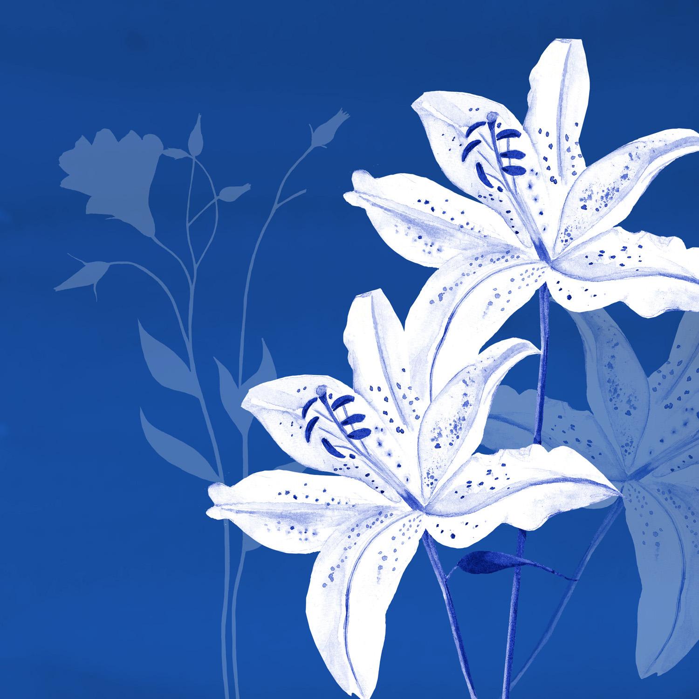 LILY ON BLUE – Design Ref. 1563