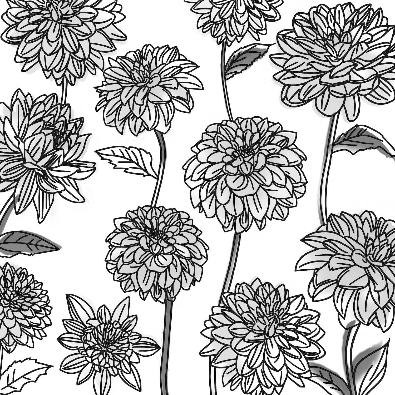 DAHLIA GATHERING – Design Ref. 2255