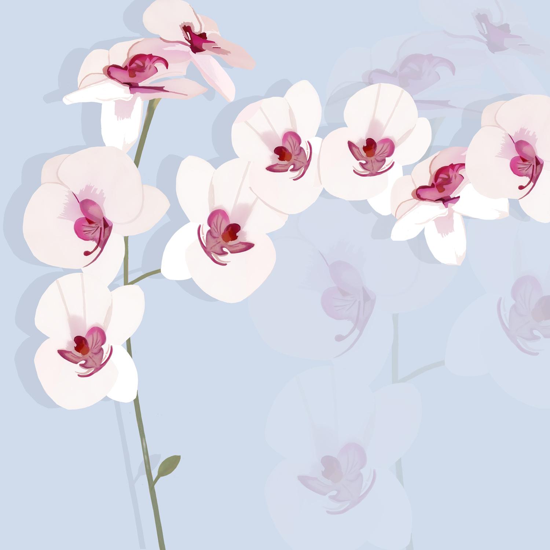 WHITE ORCHID EXHIBIT – Design Ref. 1836