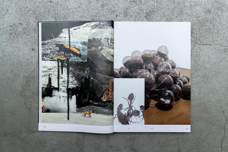 9-21-3.jpg