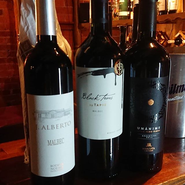 Några nya argentinska viner 😍