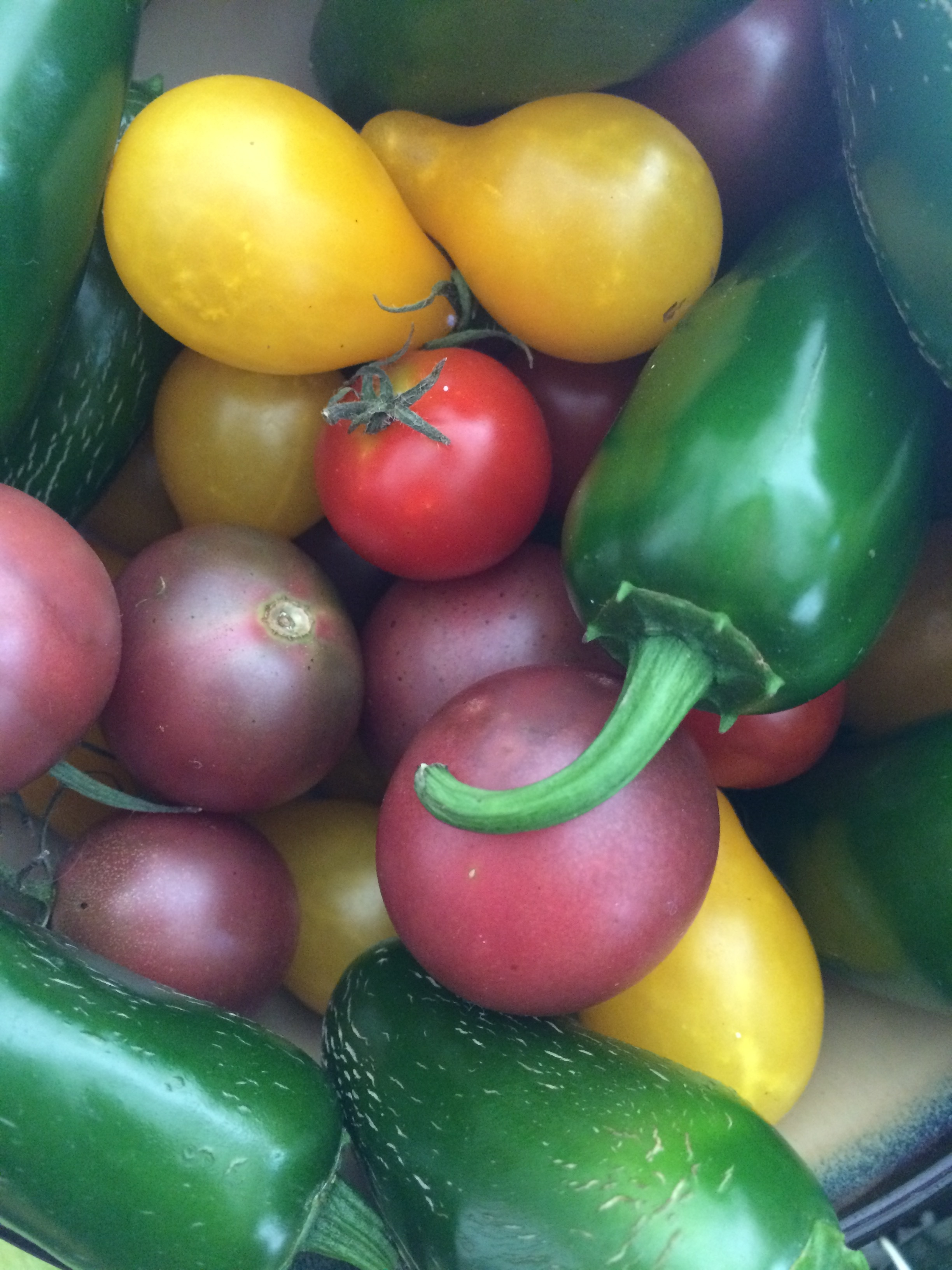 Heirloom tomatoes snuggled up with jalapenos.