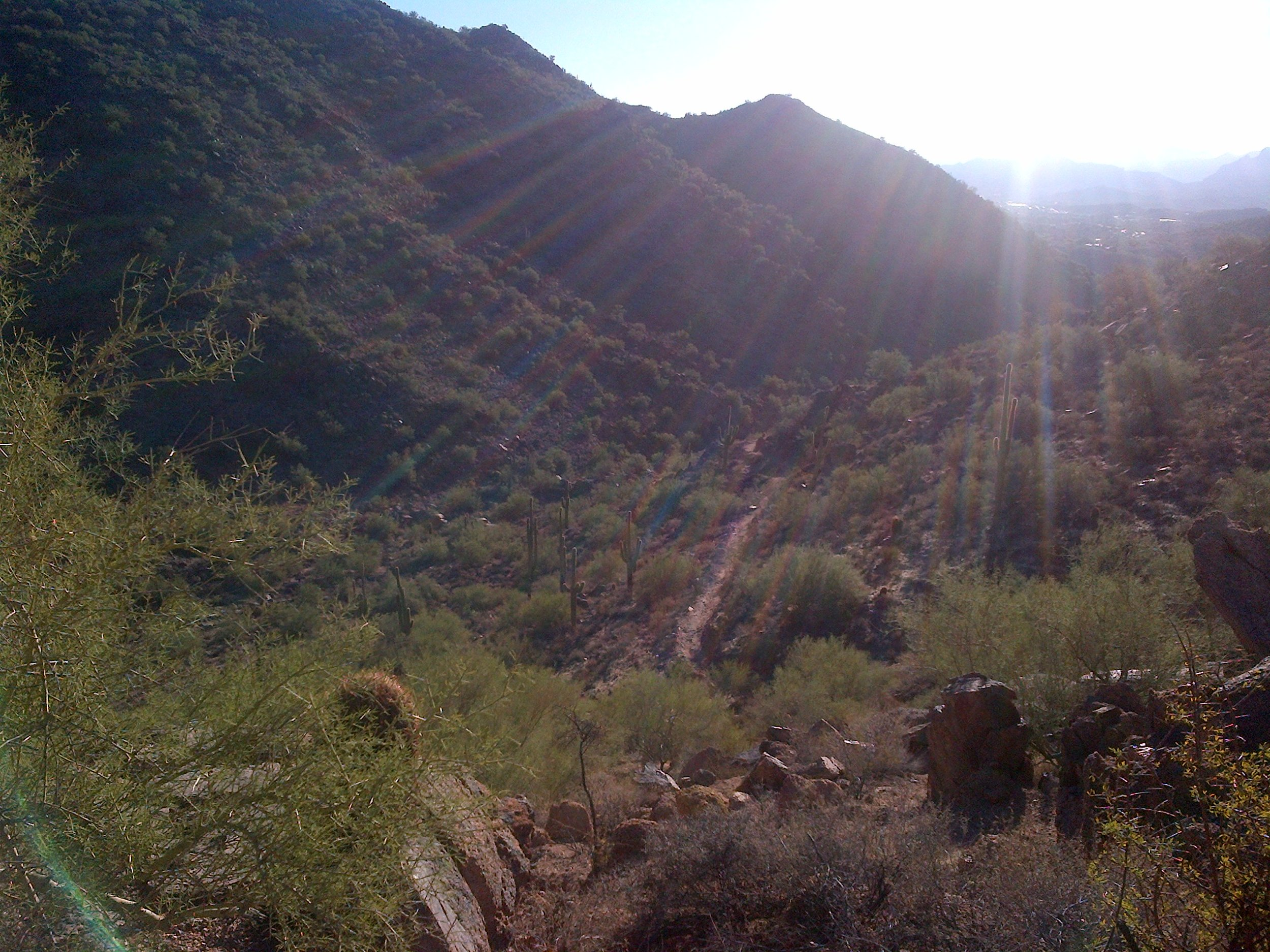 early morning hike before day 2 with the analysts and consultants - before the sun gets too hot!