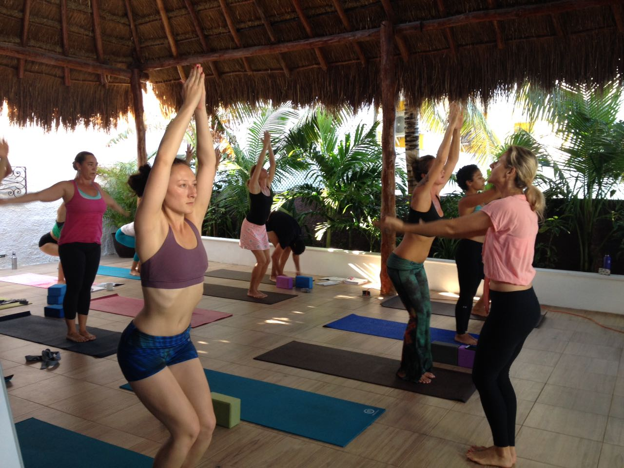 200hr YTTJanuary 2019 - January 4 -27 2019Isla Mujeres, MexicoRed Buddha Yoga + WellnessBefore August 15 2018 $2200USDAfter August 15, $2600USD15 students max capacity.