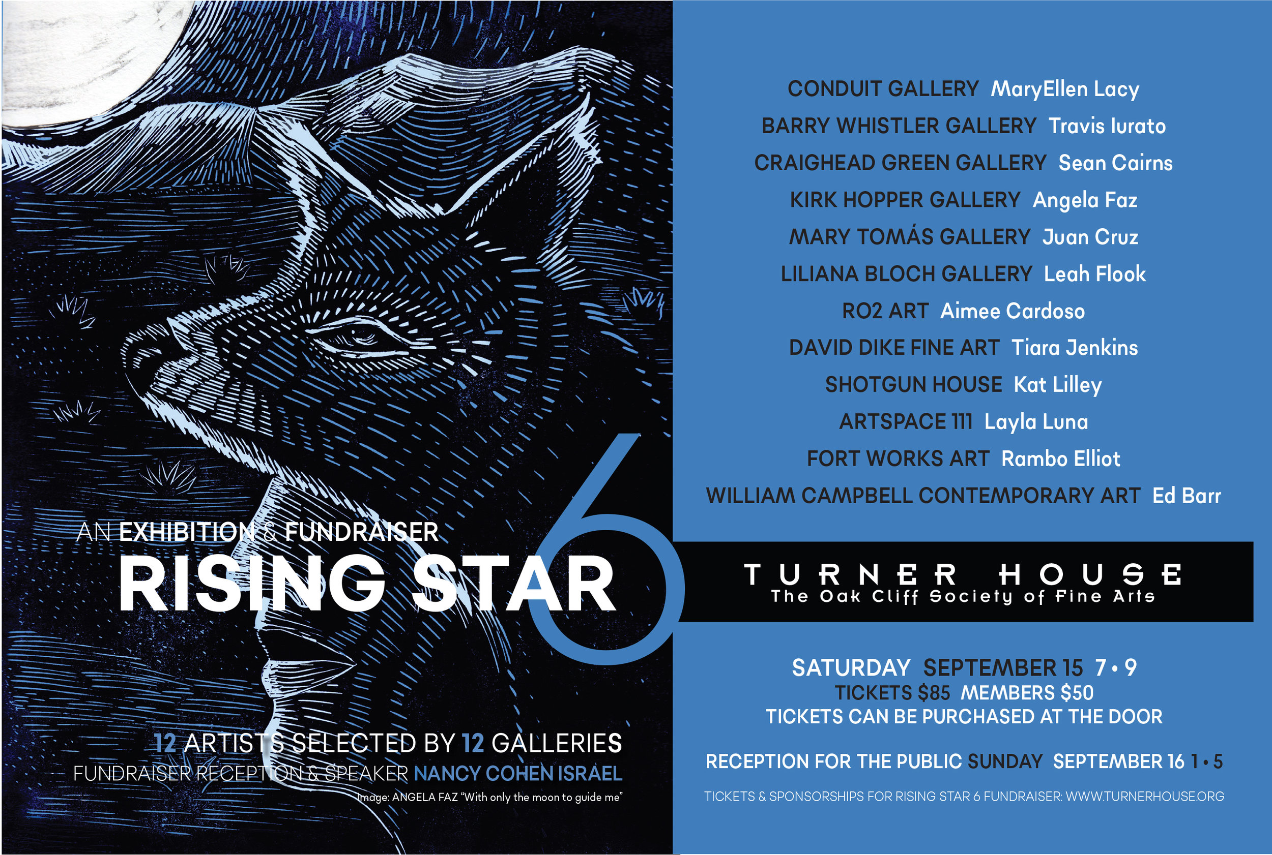 Rising Star Exhibition - Opening Reception: September 15, 2019, 7-9 PM Turner House- 401 N Rosemont Ave, Dallas, TX