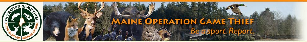 maine_operation_game_thief.jpg