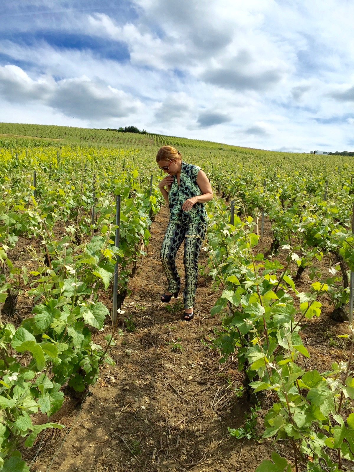 Larissa at the Épernay Vineyards in France, where the Moët & Chandon champagne is made.