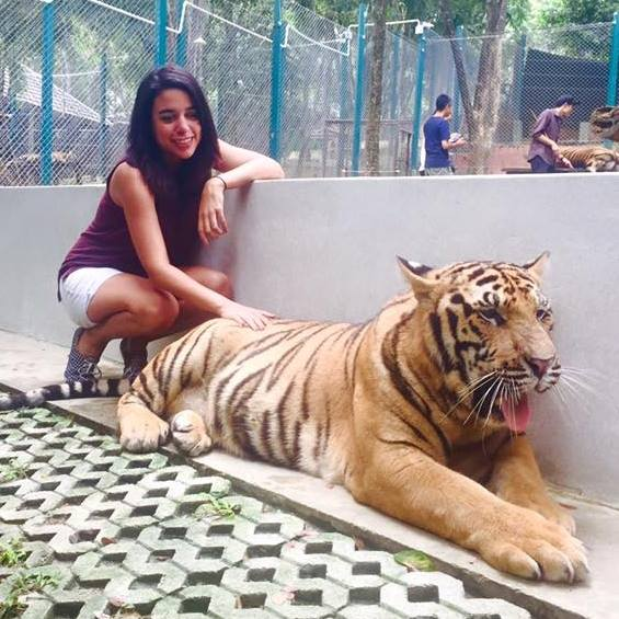 andrea batista with a tiger