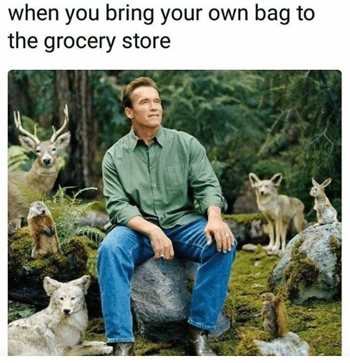 bring your own bag to grocery store meme