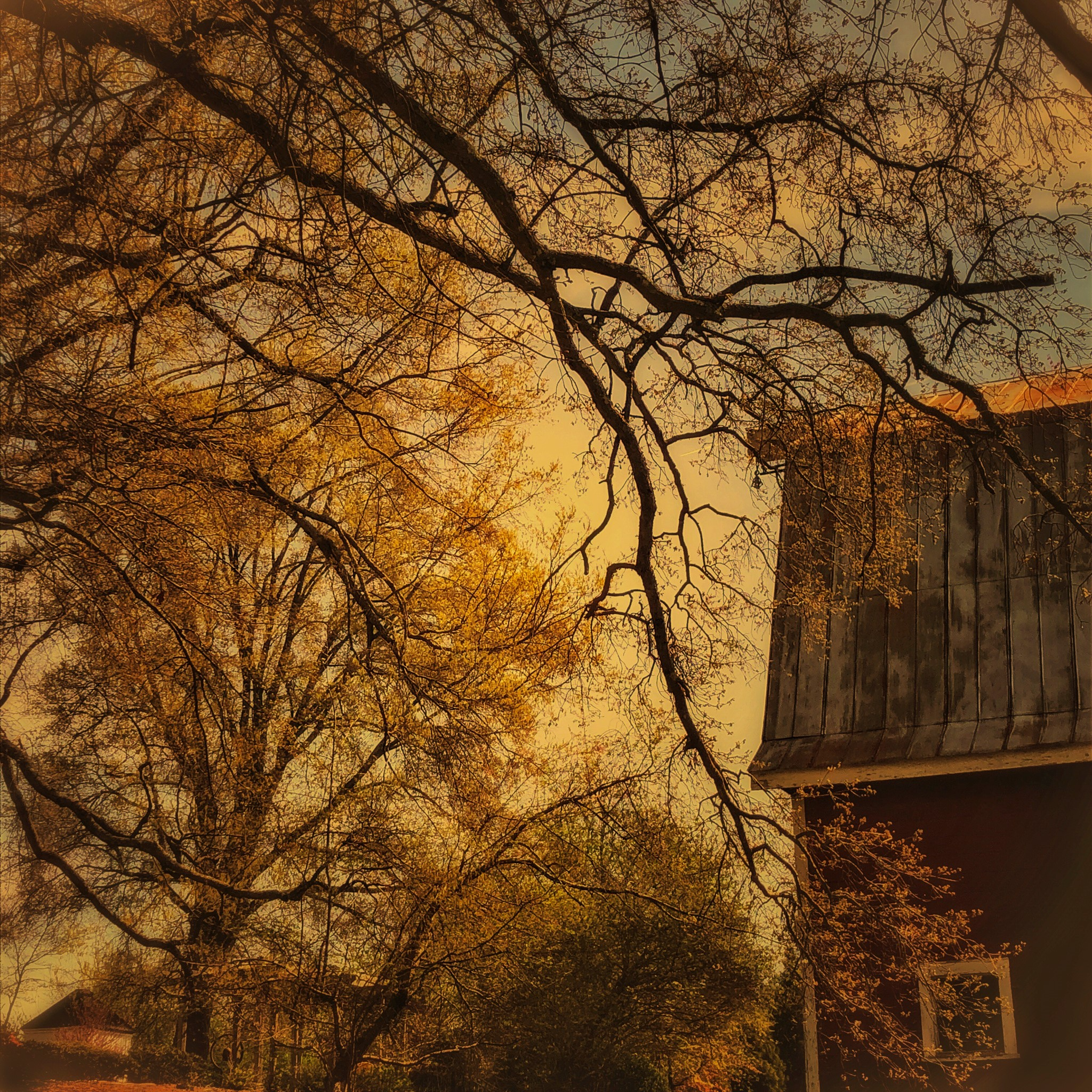 BARBARA TYROLER - Barn below Bereavement CenterContemporary photography conceived through the synthesis of light, imagination, and technology. www.barbaratyroler.com https://www.instagram.com/btyroler/