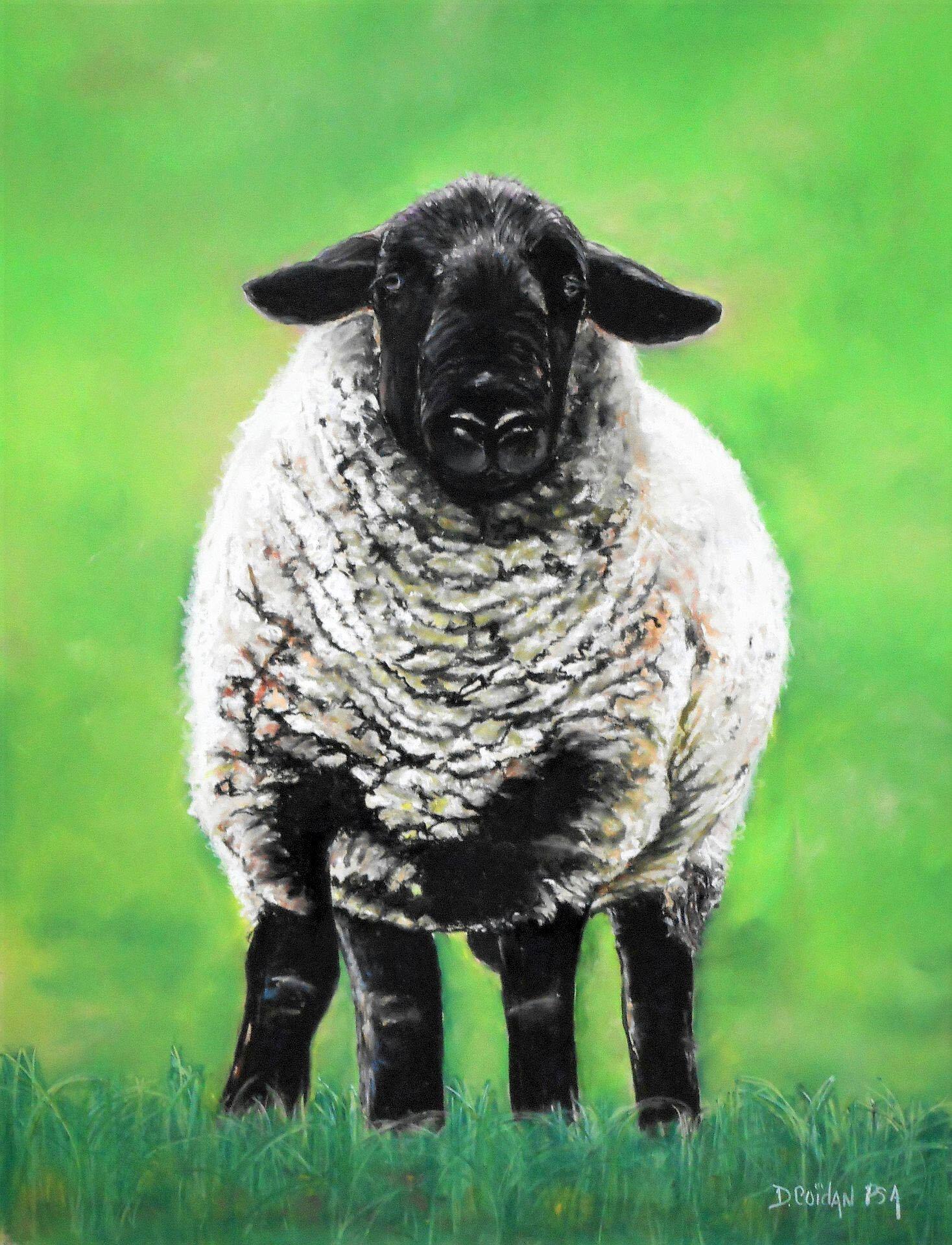 Diana_Coidan__Candi's_Sheep.jpg