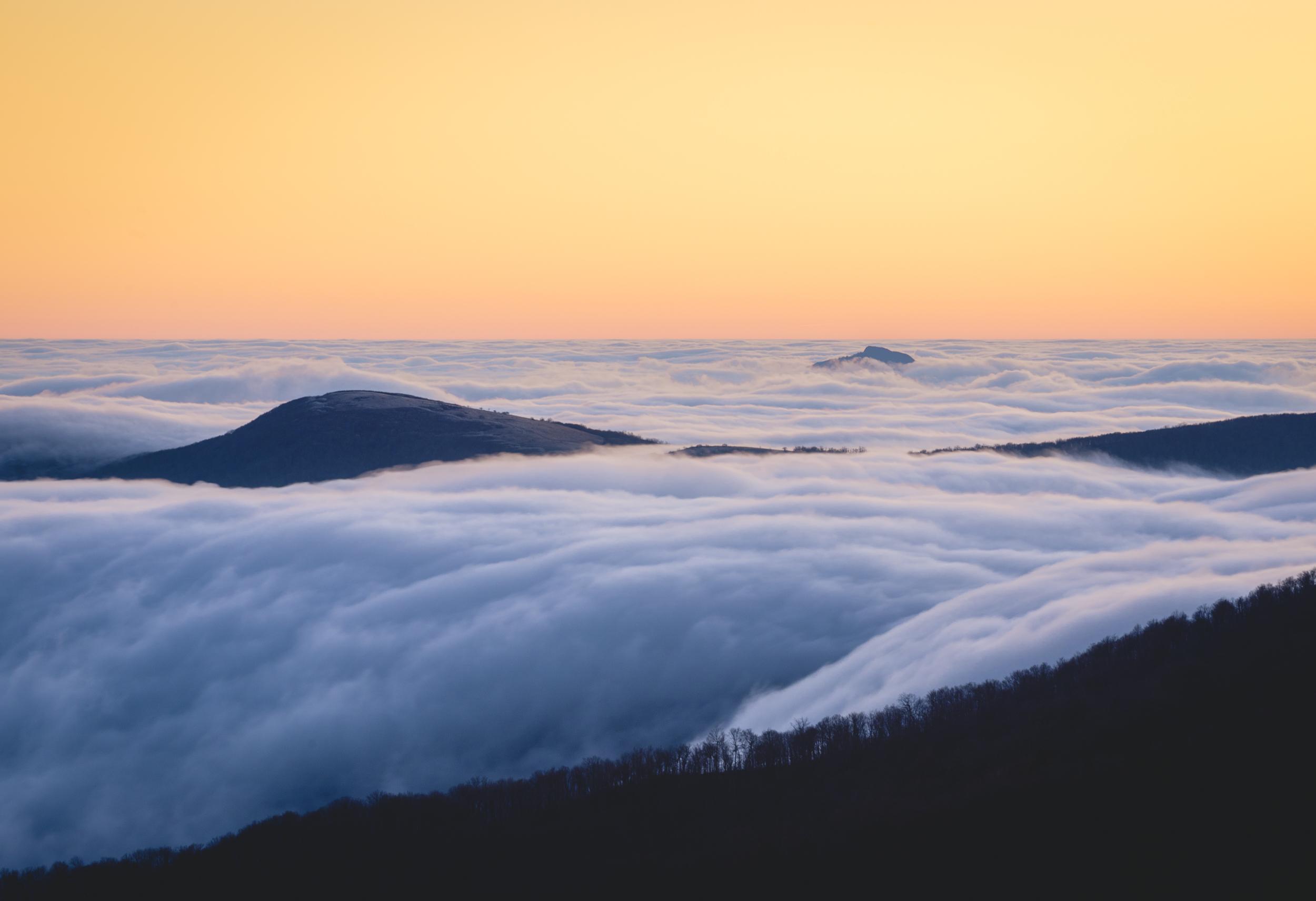 Roan Sunrise-1.jpg