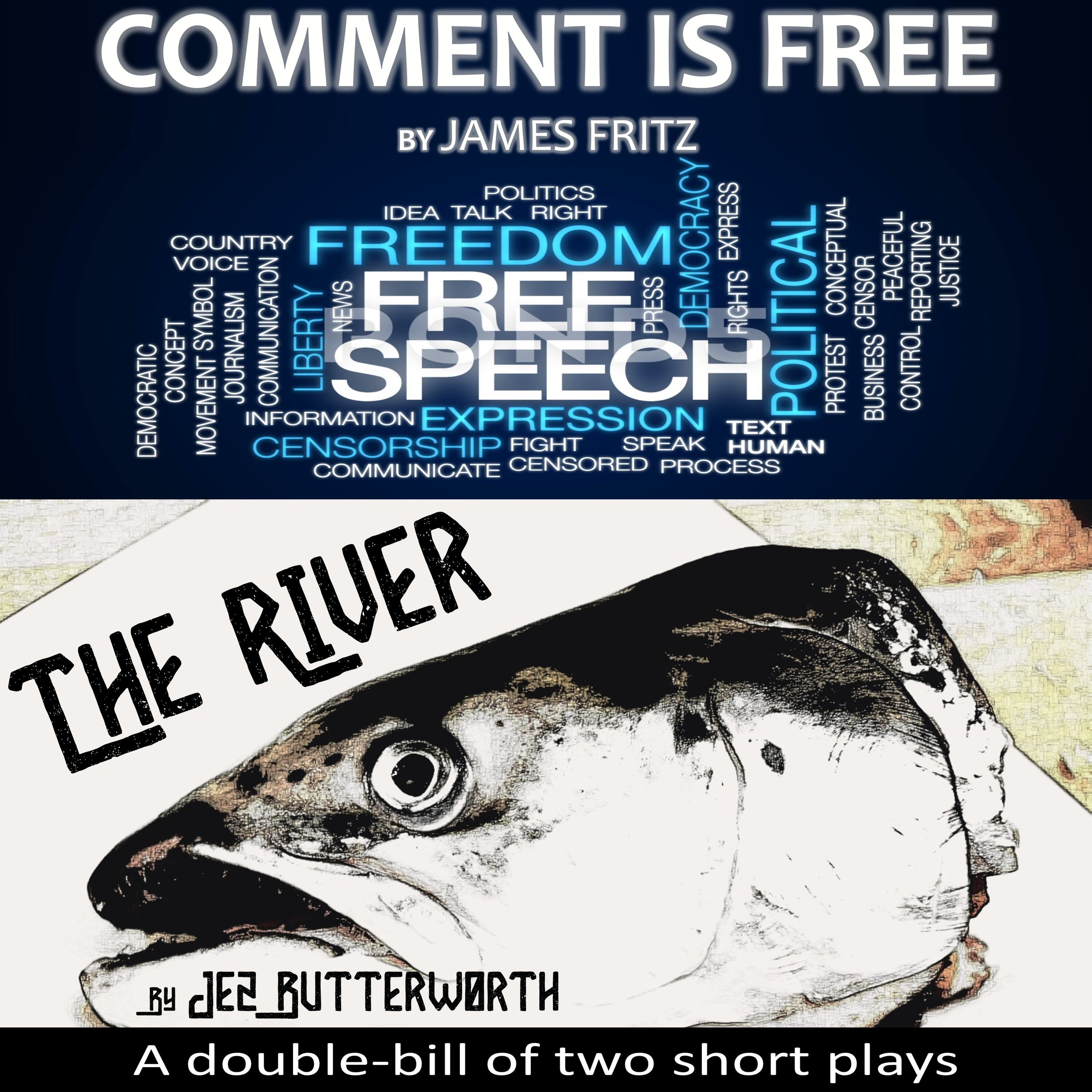 comment is free and the river web image.jpg