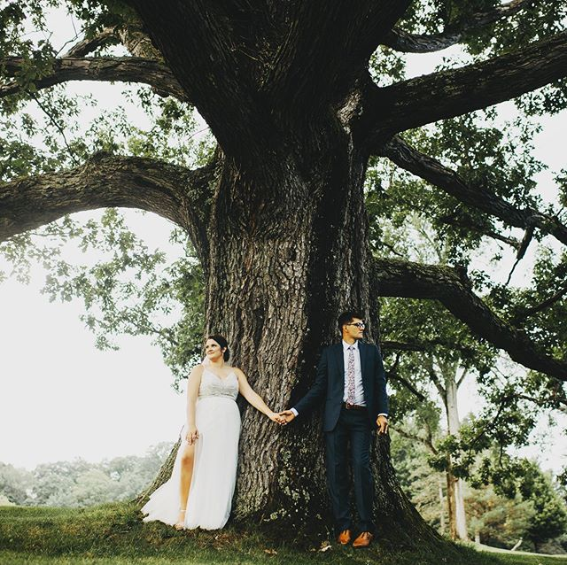 The oak tree is very much loved by @birdandrew and so it's so obvious why he'd take his favorite person in the world to his very favorite tree. #oaktree #moonbrookcountryclub #jamestownny #golf #golfcourses #oldtree #wedding #brideandgroom #forstcomeslovethencomesmarriage #branches #truelove