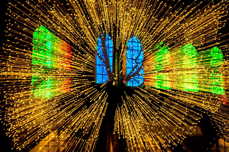 flower of lights