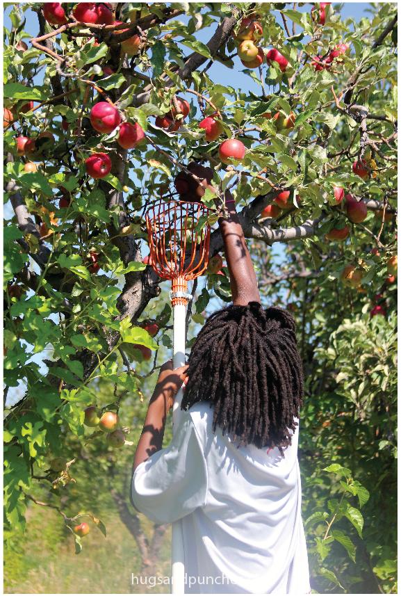 happy-apple-farms-5
