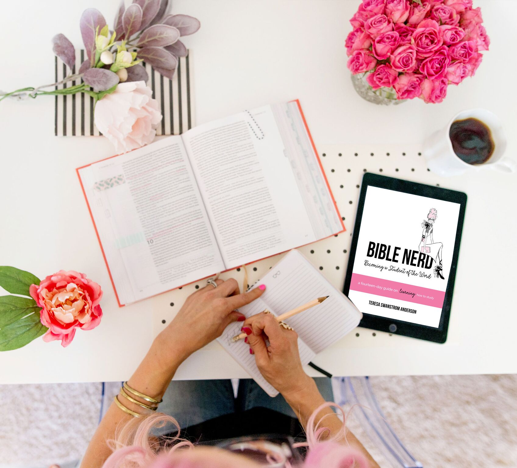 Study God's word on your own!   Want to study God's Word on your own, but don't know where to start?   Join now    to d  ownload this FREE 14-day guide on learning HOW to study God's Word and become a  Bible Nerd.