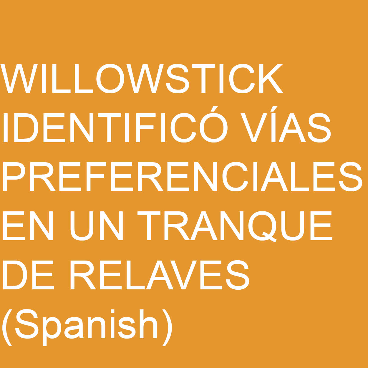 Willowstick Identifico via preferencialies en un tranque de relaves.jpg