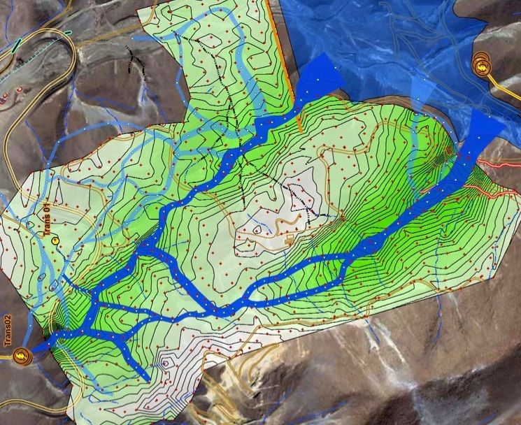 This image shows the results of a Willowstick survey. Dark green indicates magnetic high and the blue lines show individual subsurface water pathways.