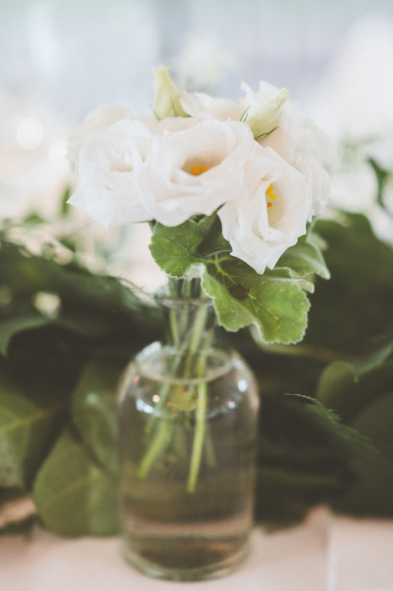 paper antler - katie + scott wedding  -  0044.jpg