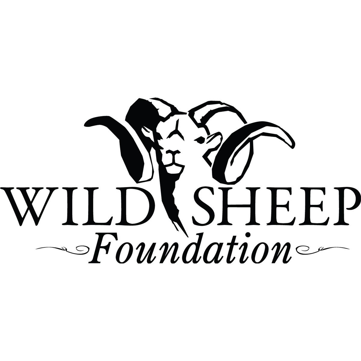 Wild Sheep Foundation Rookie Hunter