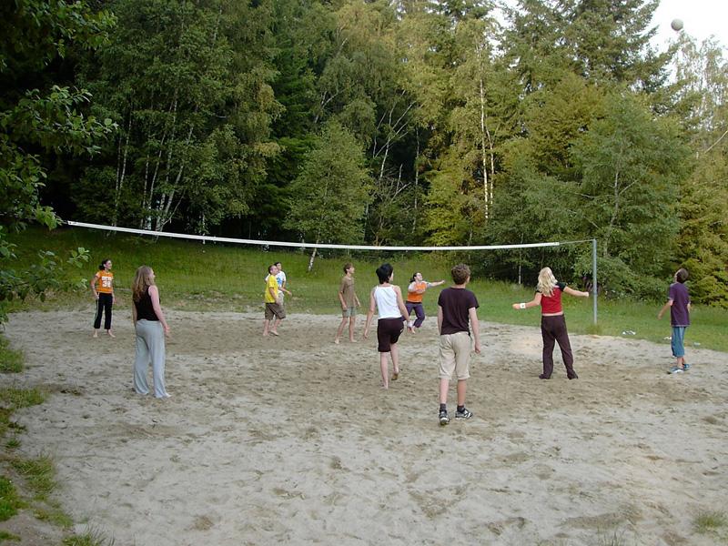 beach-volleyball-250785_1280.jpg