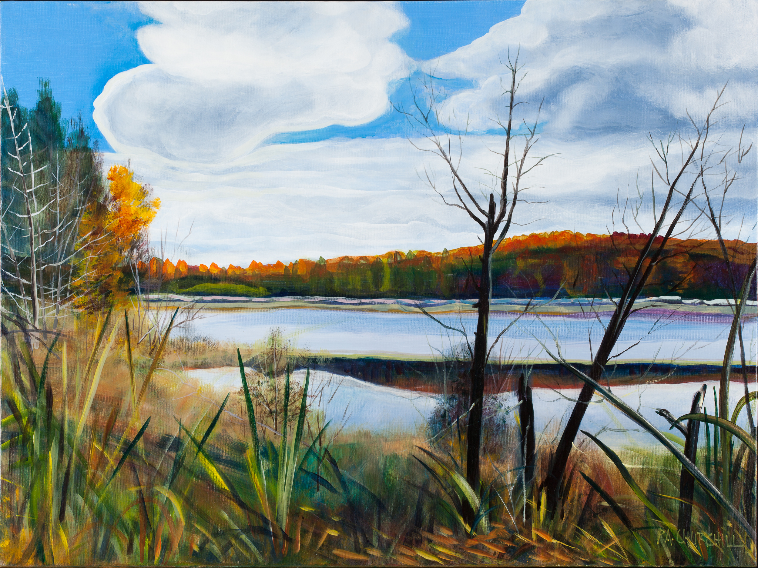 "Autumn Day On Harrison Lake  30""x40"" Acrylic"