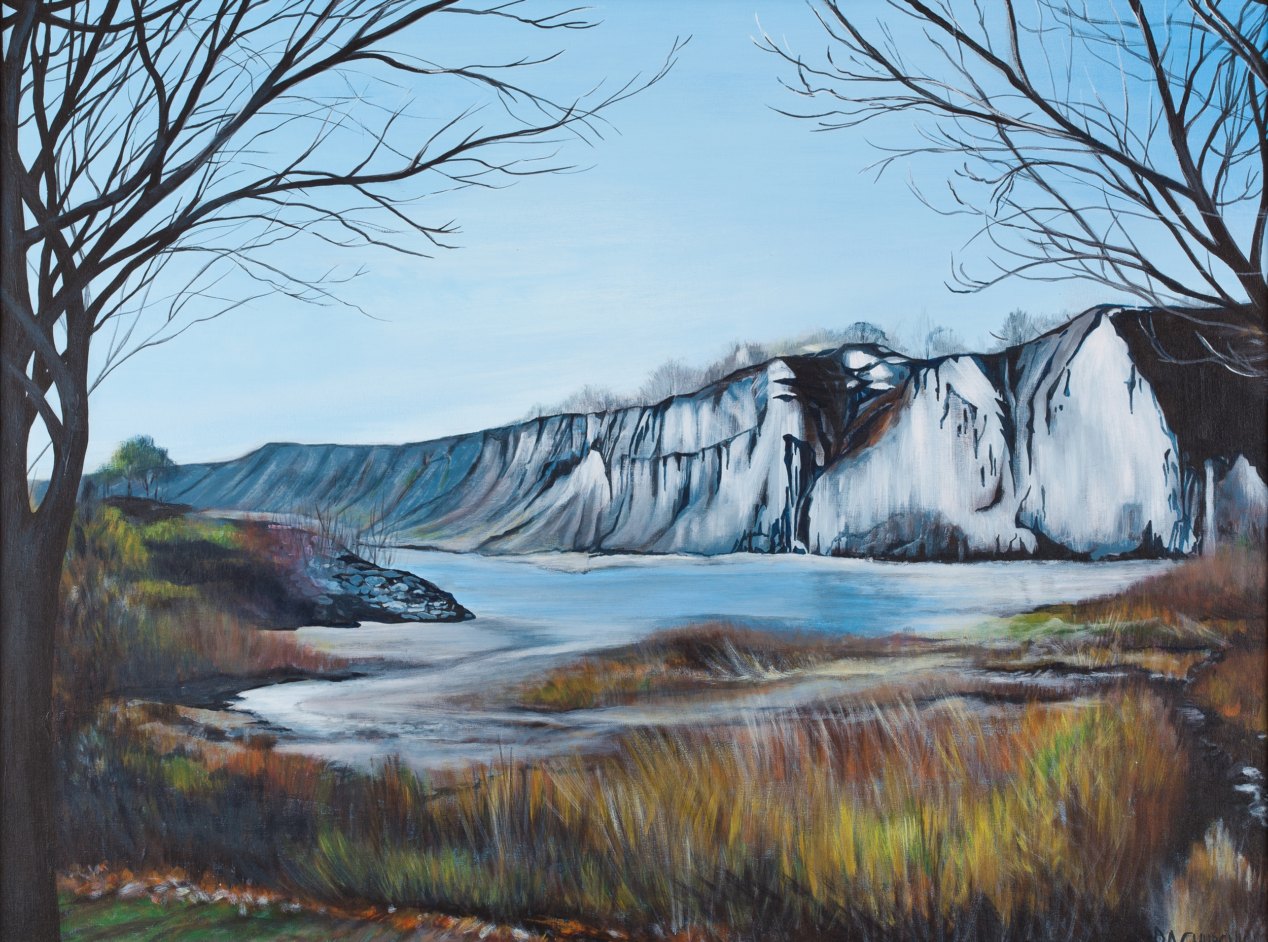 "Fall Day At Scarborough Bluffs  30""x40"" Acrylic SOLD"