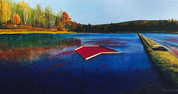 "Cranberry Bog Days In Bala 24""x48"" Acrylic $875.00 On Exhibit at the Collingwood Library Until October"