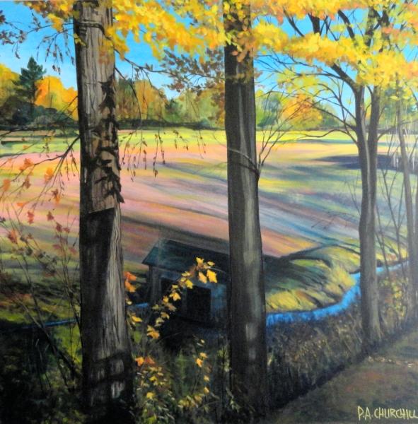 "The Boggy Fields of Bala 30""x30"" Acrylic $675.00"