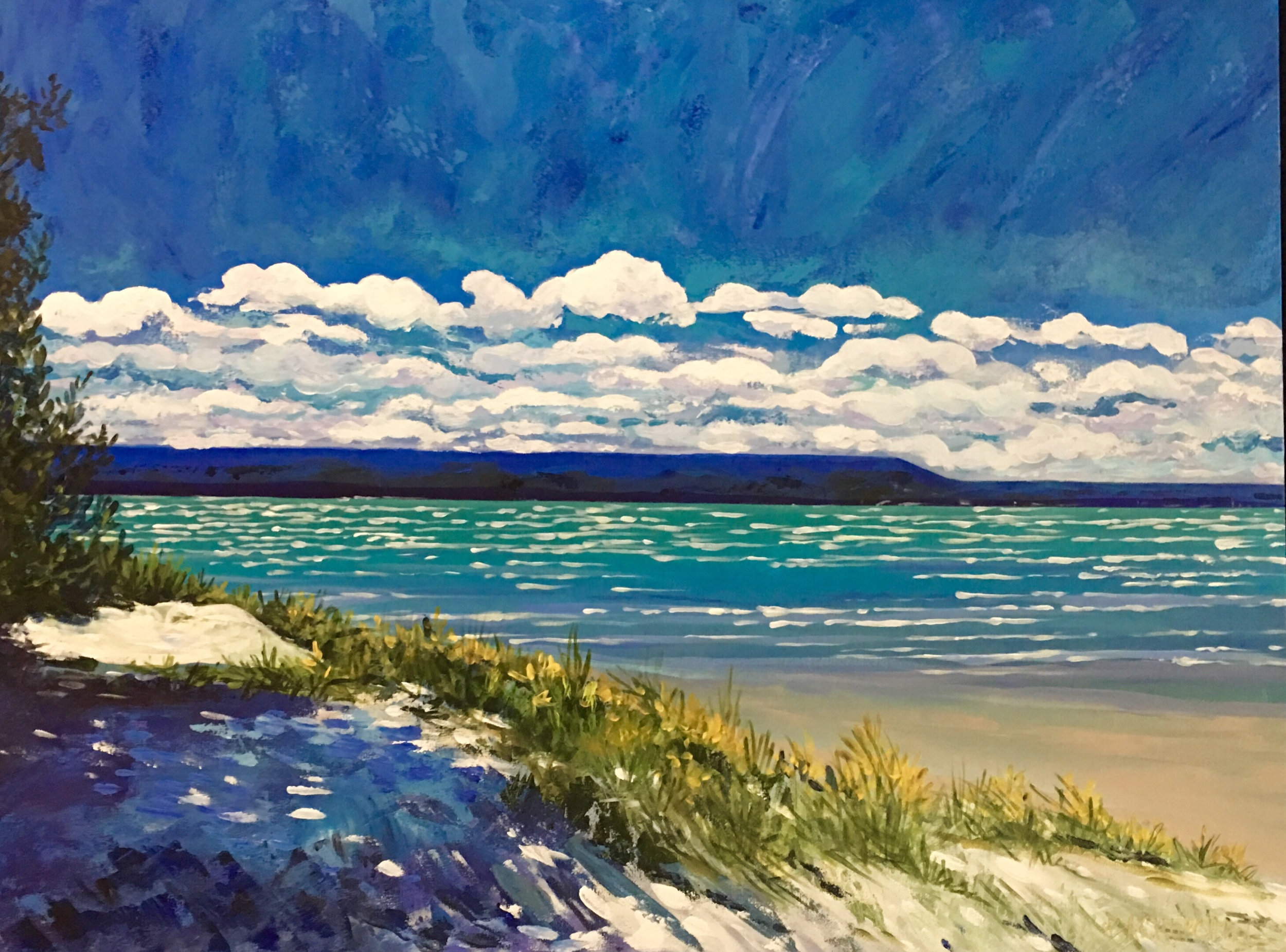 """A Jewel of a Day 30""""x40"""" Acrylic $900"""