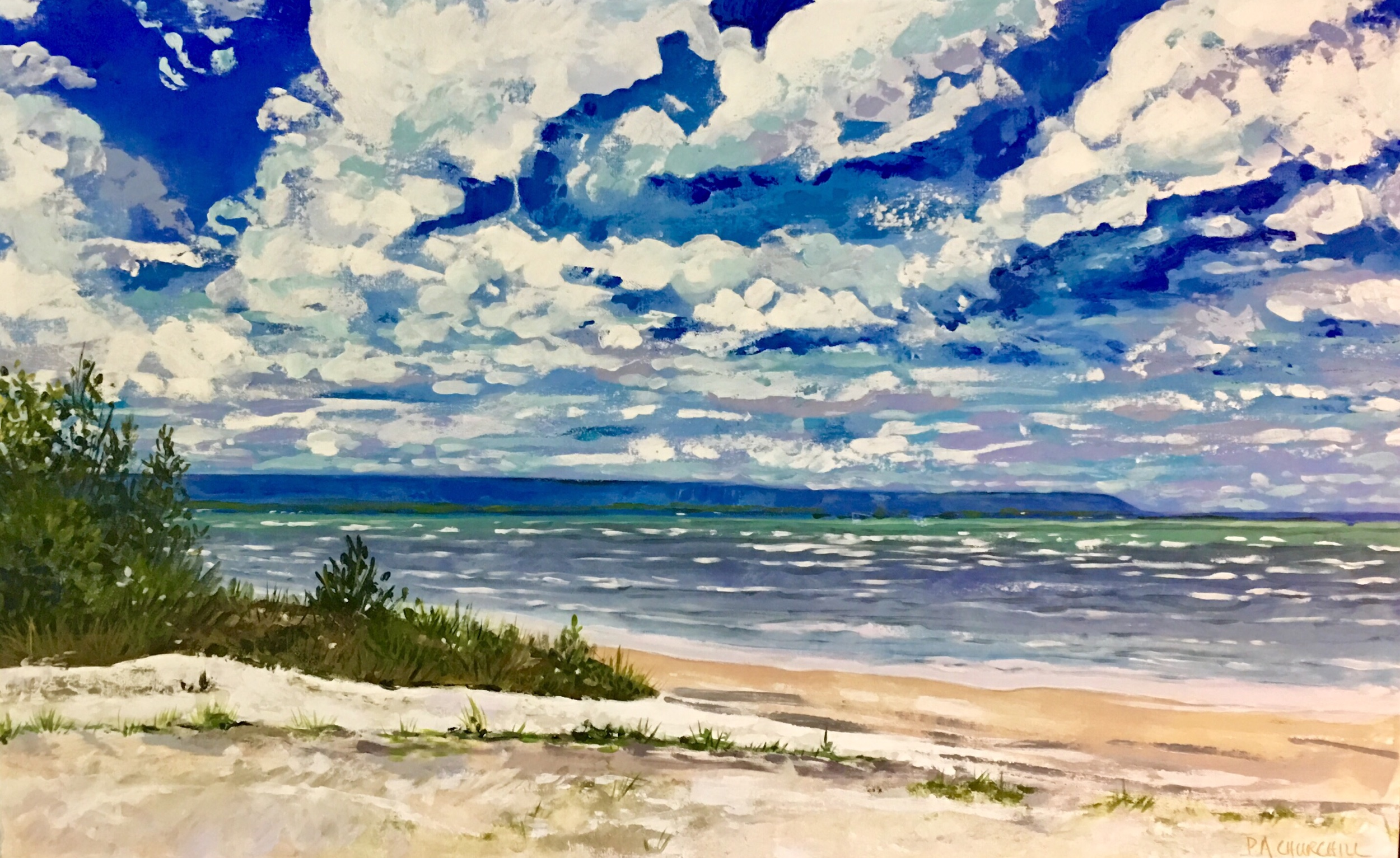 "Those Summer Days 30""x48"" Acrylic $1085"