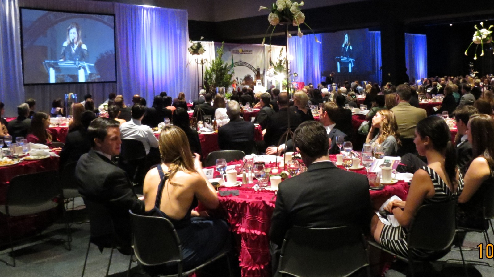 Fundraisers & Charity Events   Gala Dinners - Live Auctions - Luncheons  Tampa | St. Petersburg | Orlando