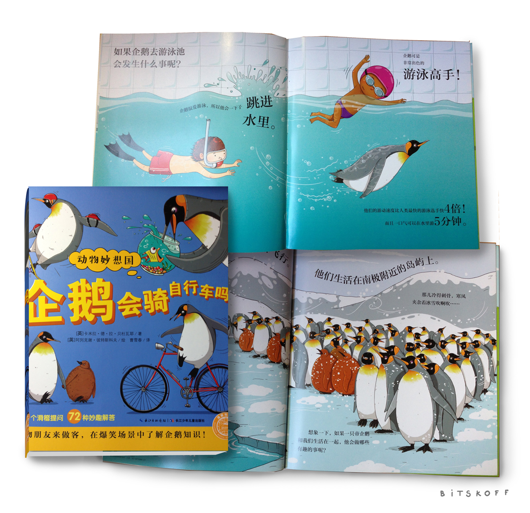 Chinese_Penguin