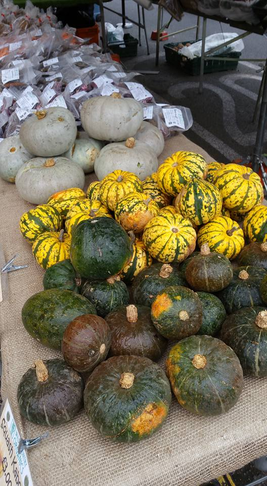 Squashes from Ealing Farmers Market