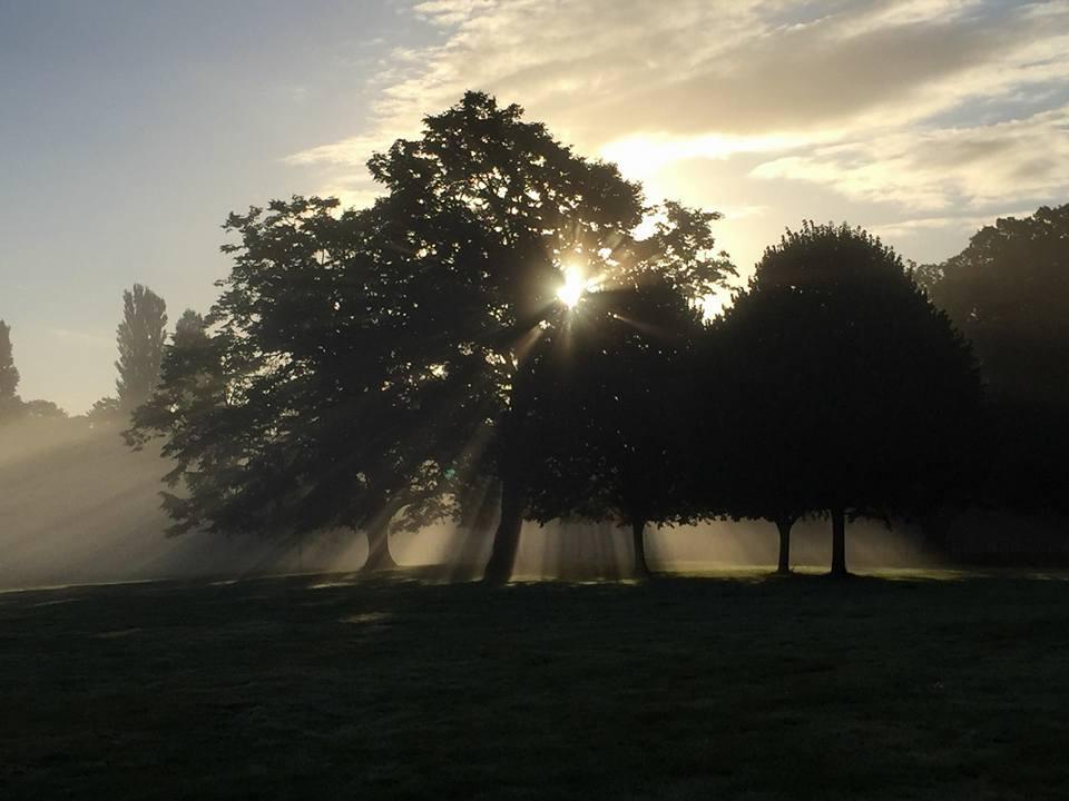 Sunset over Osterley park