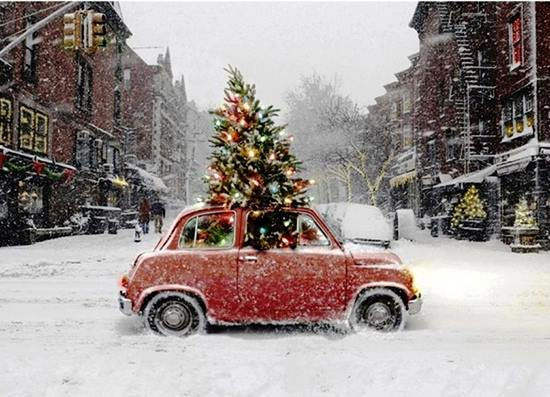 Christmas tree in a red mini