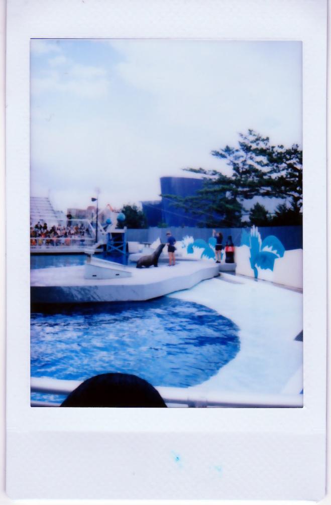 coney_island_2.jpg