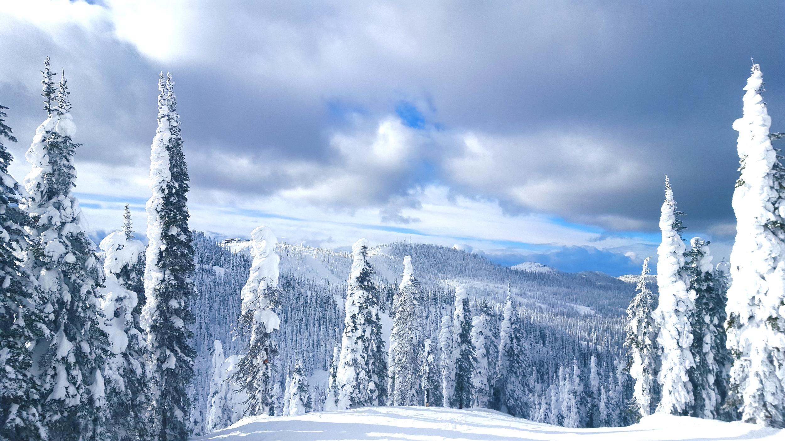 snowghosts.jpg