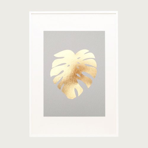 cheeseplant_white_frame_on_coloured_background_1024x1024.jpg