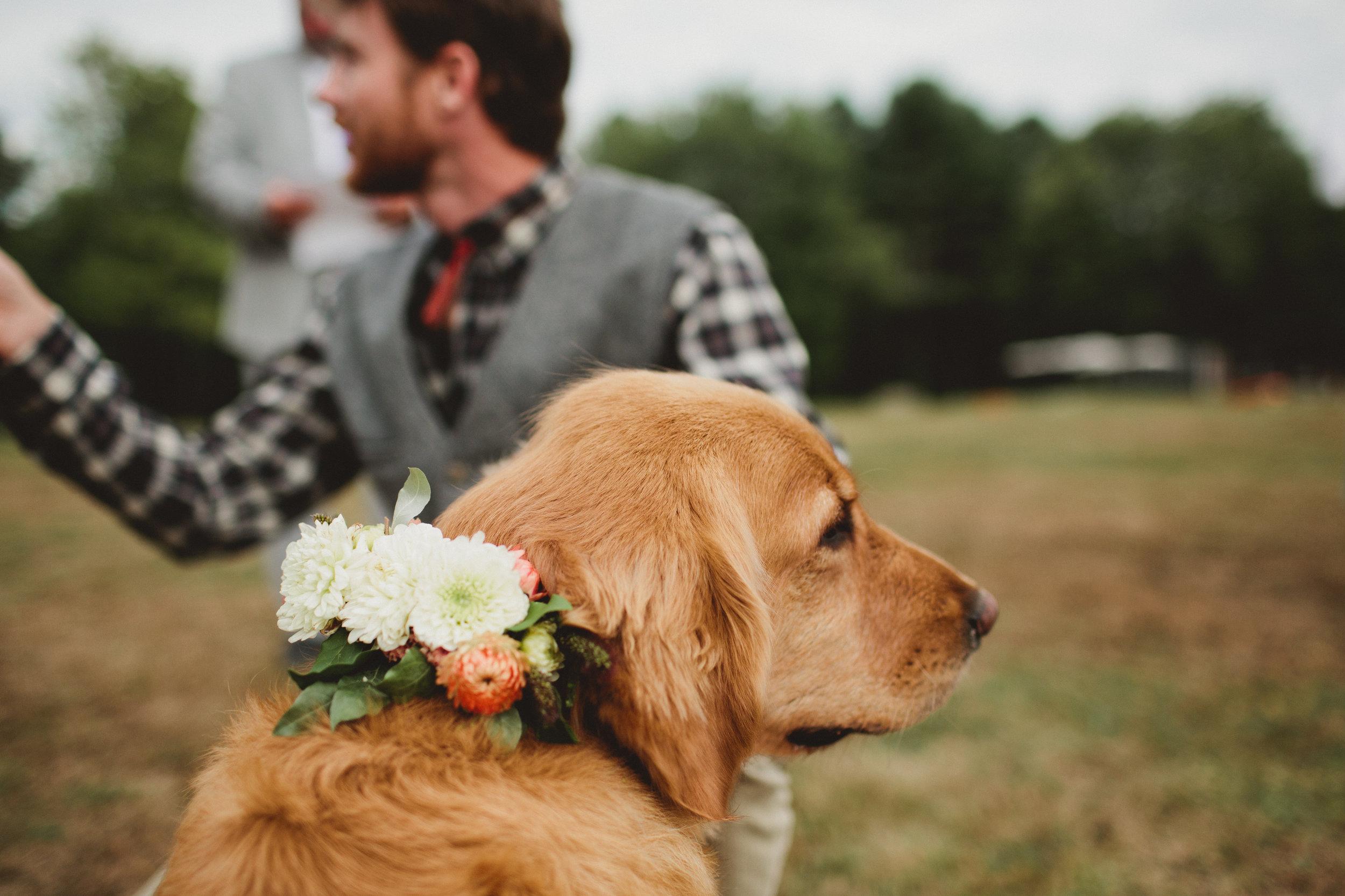 Vanessa-Matt-Wedding-148.jpg