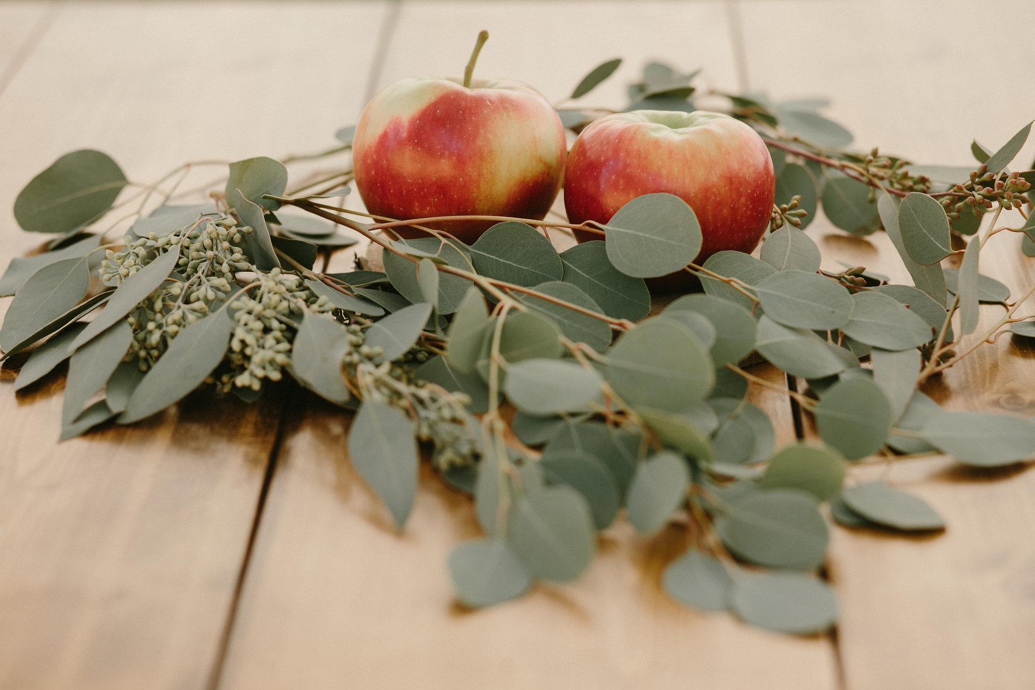 gaddes-jablonowski-wedding-481.jpg