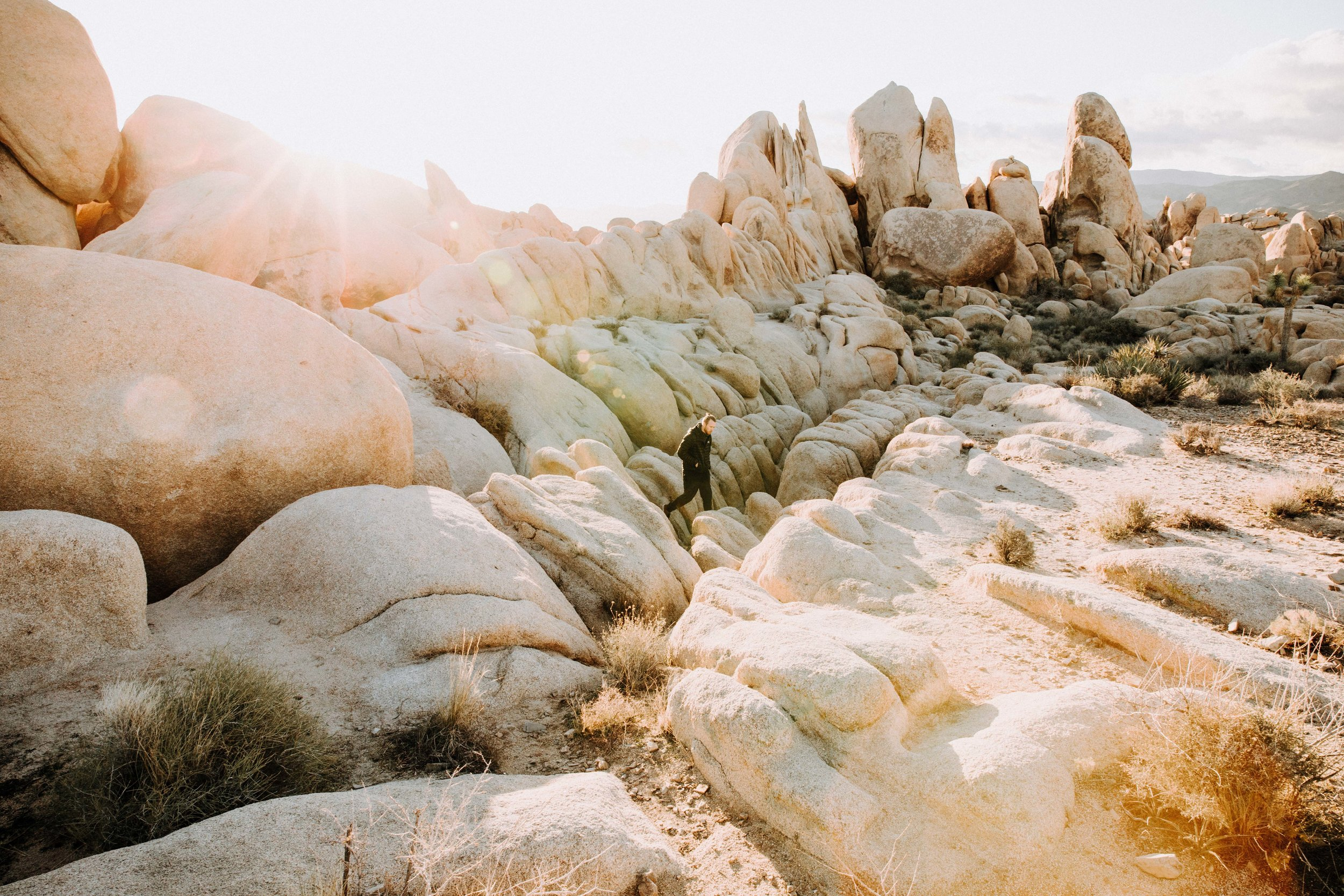 White Tank Campground in Joshua Tree National Park