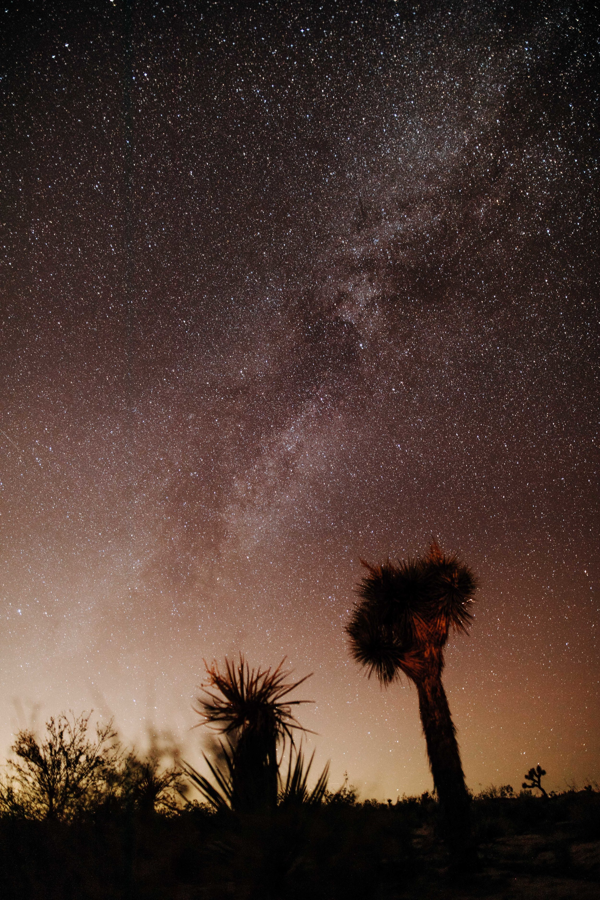 Milky Way in Joshua Tree National Park Astrophotography
