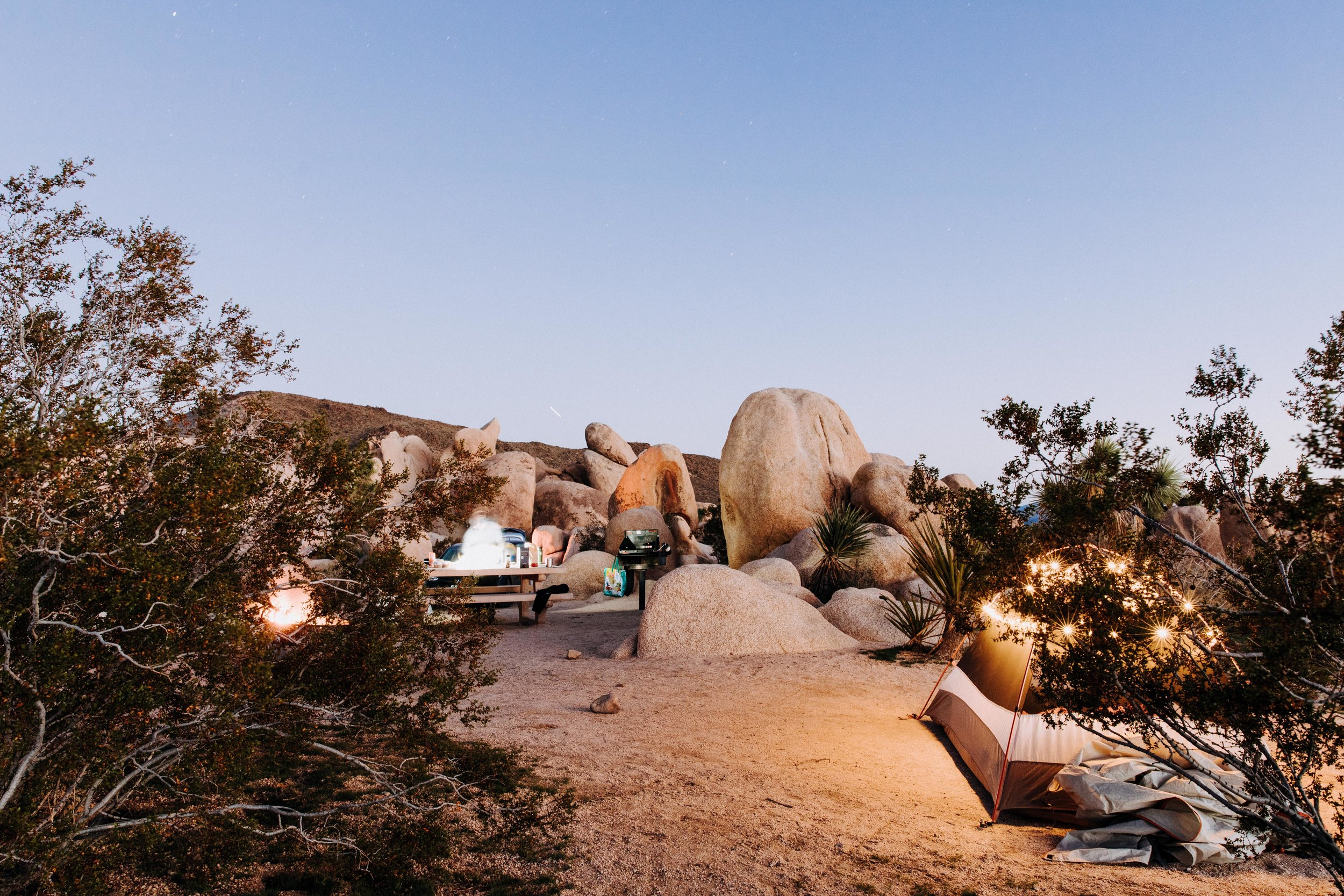 Joshua Tree National Park Visitor Guide