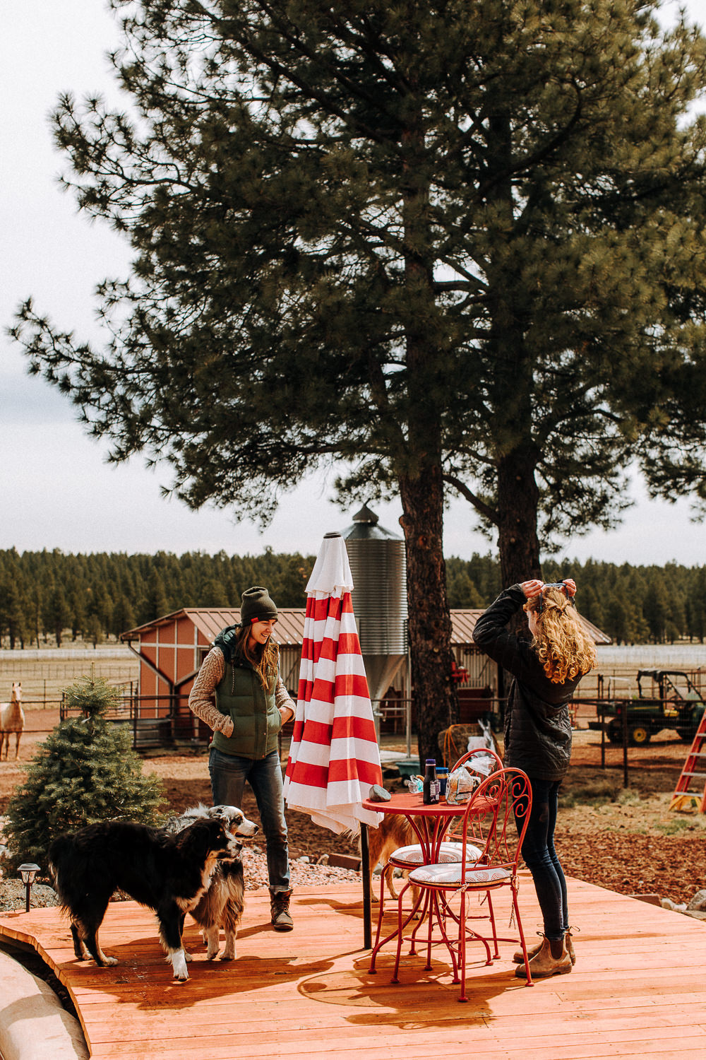 Best Cabins and Camping Around Flagstaff with Hipcamp   Temple Mountain Ranch in Williams, Arizona